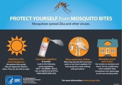 Travelers Should Protect Themselves Against Zika